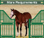Mare Requirements